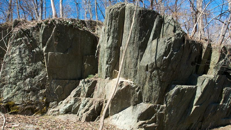 Large boulder on the east end of Section B of the Billy Goat Trail.