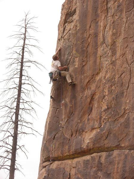 Rock Climbing Photo: Big Gun Pat coasting on The Zo.