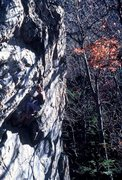 Rock Climbing Photo:    The shift from one season, to the next,... is o...