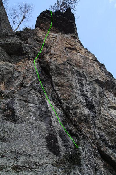 Rock Climbing Photo: the line of freebird