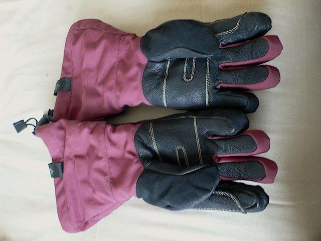 BD gloves, womens medium.