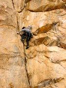 Rock Climbing Photo: Cracker Jack on lead.
