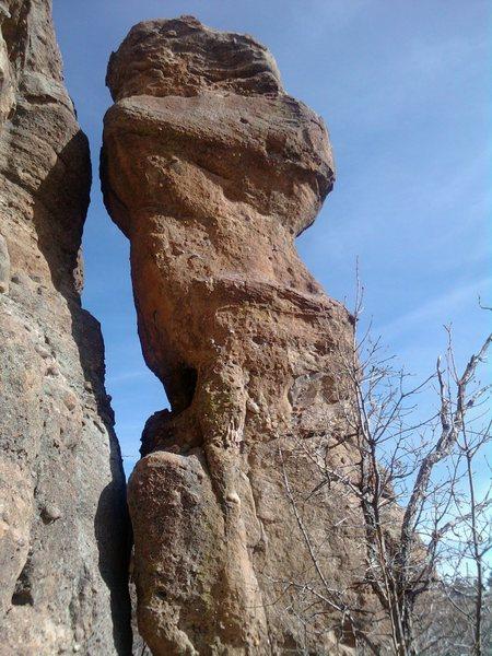 Rock Climbing Photo: Phalloid Void.