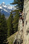 Rock Climbing Photo: Wesley Gooch climbing Blitzkreig - 5.11d at Blackt...