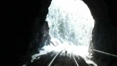 Rock Climbing Photo: my dog zion coming therw threw tunnel 6 next to th...