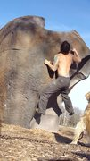 Rock Climbing Photo: deadpoint to sloper..mantle out (slap happy V1)