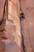 Rock Climbing Photo: The Sparkling Zygote.