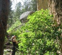 Rock Climbing Photo: Route hunting in Piney Creek Canyon