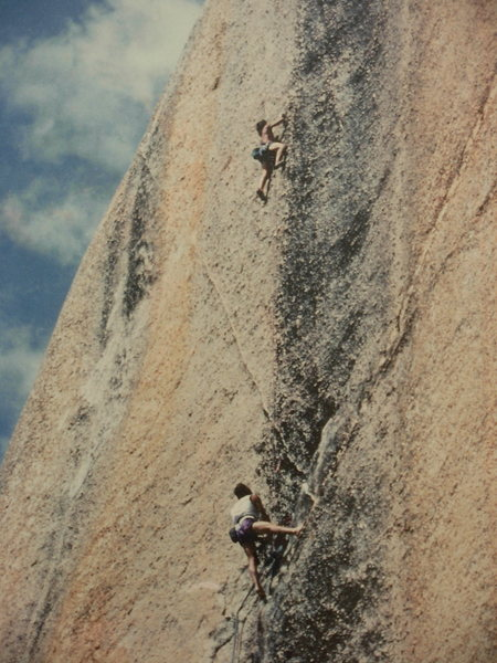 Rock Climbing Photo: Easiest yet to identify ?