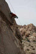Rock Climbing Photo: Albert top rope variation on the Varnished Wall.  ...