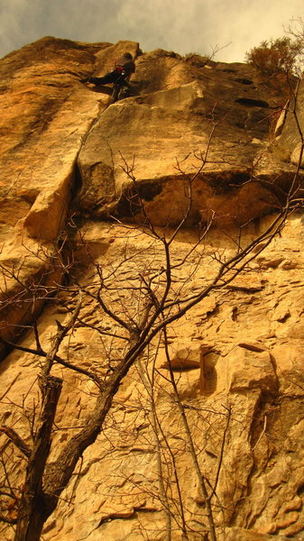 Rock Climbing Photo: Stargazer.