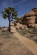 Rock Climbing Photo: Cap rock loop trail
