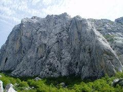 Rock Climbing Photo: Anica Kuk