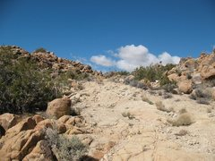 Rock Climbing Photo: The old road/trail to Queen Mountain, Joshua Tree ...