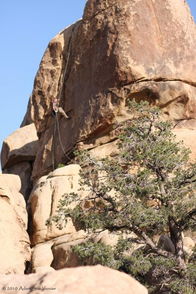 Rock Climbing Photo: Climber rapping off a route left and behind the Be...