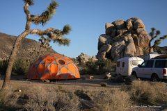 Rock Climbing Photo: Tentus Gigantisaurous