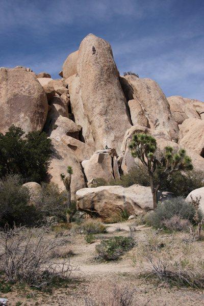 Climbing Loose Lady