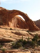 Rock Climbing Photo: Corona Arch - rappelled from the top