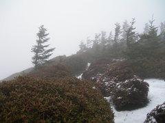 Rock Climbing Photo: Summit of LeConte