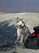 Rock Climbing Photo: Orbit on McAfees Knob