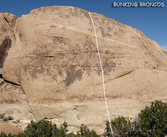 """""""Bunking Broncos"""".<br> Photo by Blitzo."""