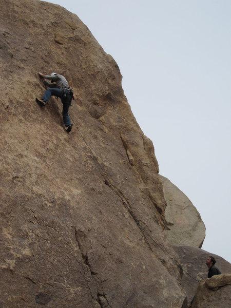 Rock Climbing Photo: Copulator