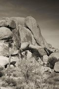 Rock Climbing Photo: Climber on Loose Lady, 5.10a Joshua Tree National ...