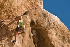 Rock Climbing Photo: Celebrating on Intersection Rock, JTree.