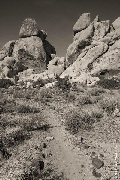 Rock Climbing Photo: Hall of Horrors