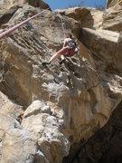Rock Climbing Photo: Whitney pulling through the huecos.