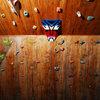 Optimus owns my climbing wall.