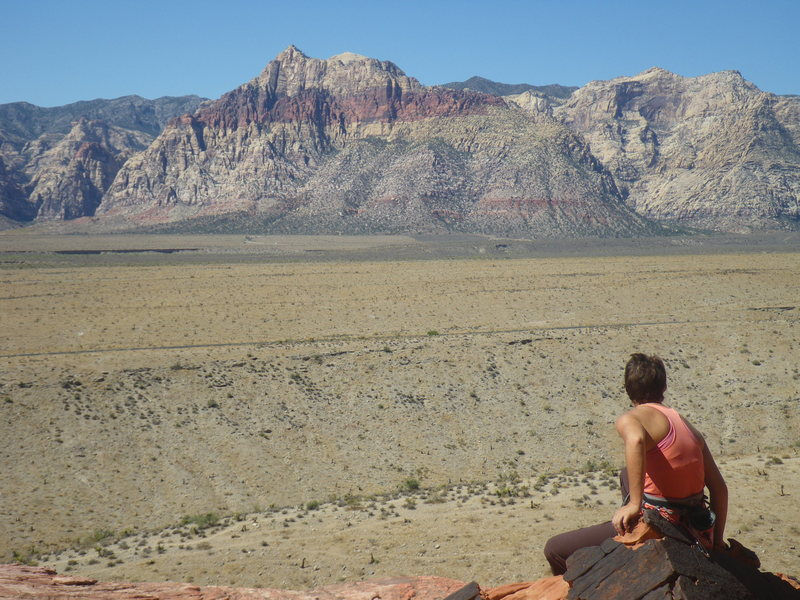 Some little girl wishes she was climbing the longer lines.
