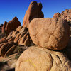 Rocks in jtree