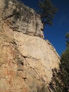 Rock Climbing Photo: Guns from below.