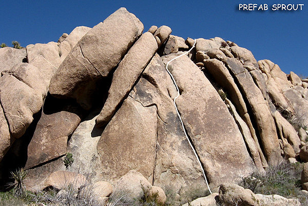 "Rock Climbing Photo: ""Prefab Sprout"". Photo by Blitzo."