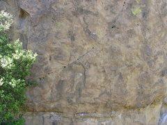 Rock Climbing Photo: carpenters crack