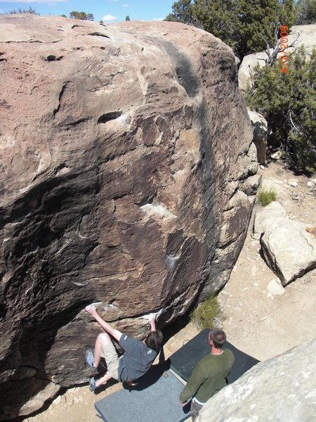 Lemon Boulder-Triassic
