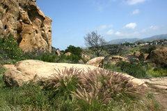 Rock Climbing Photo: Back Wall area.  4-3-10