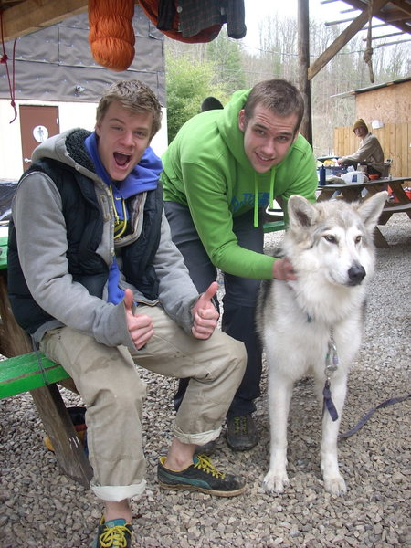 Tom, Me, and the Wolfdog at Miguels