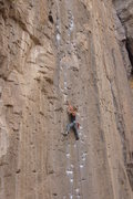 Rock Climbing Photo: Monica leading Pick Pocket