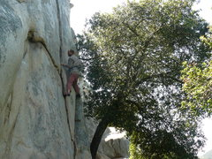 Rock Climbing Photo: Tucker Tech on The Y Crack