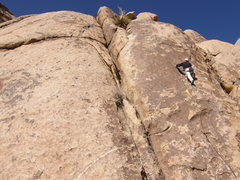Rock Climbing Photo: Binder