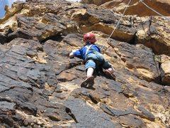 Rock Climbing Photo: Fun for kids!