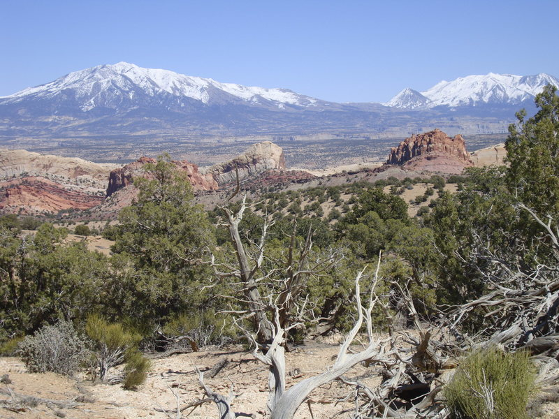 Henry Mountains from the top of Waterpocket Fold