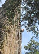 Rock Climbing Photo: Jay barreling up Supremacy Crack.