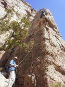 Rock Climbing Photo: Red Dog