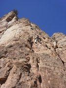 Rock Climbing Photo: Period Epic.