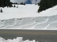 Trail Ridge.