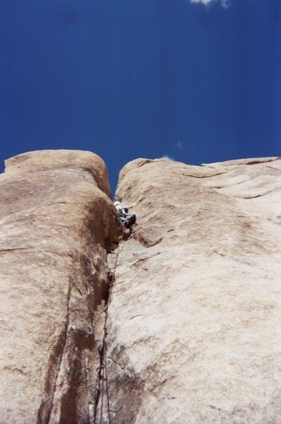 Rock Climbing Photo: midway up Looney Tunes