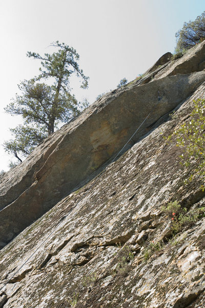 Rock Climbing Photo: Two bolts recently appeared on the overhang near t...